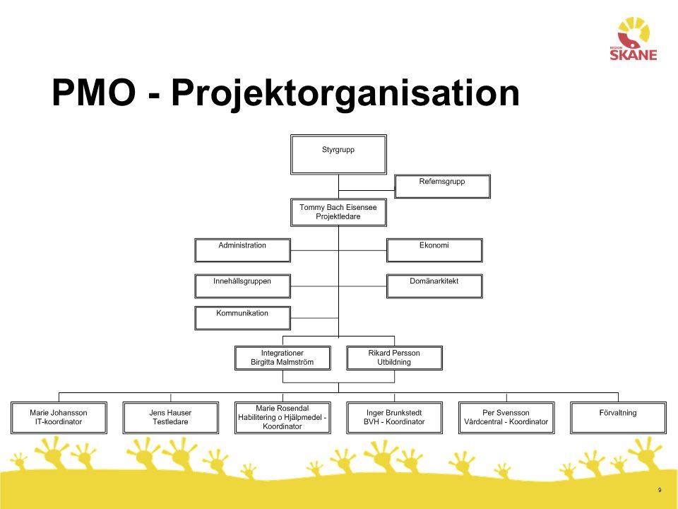 PMO - Projektorganisation