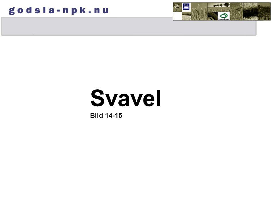 Svavel Bild 14-15