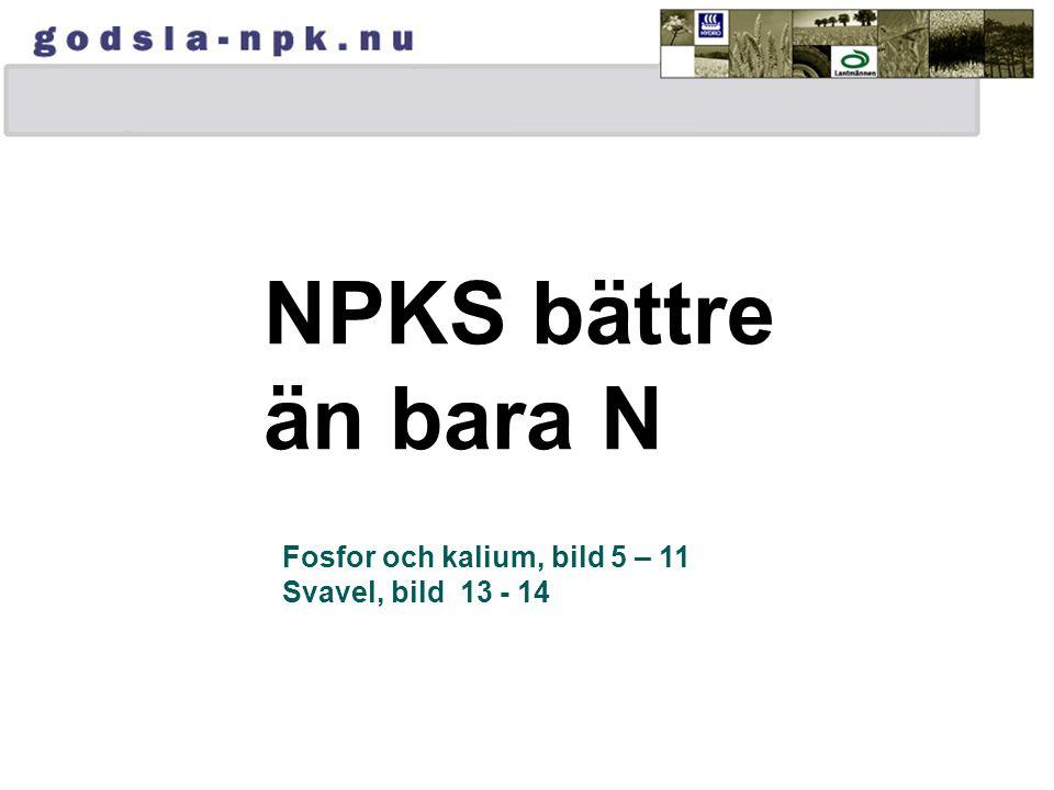 NPKS bättre än bara N Fosfor och kalium, bild 5 – 11