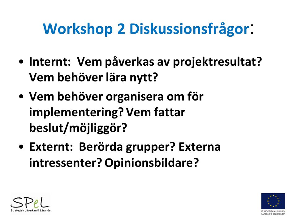 Workshop 2 Diskussionsfrågor: