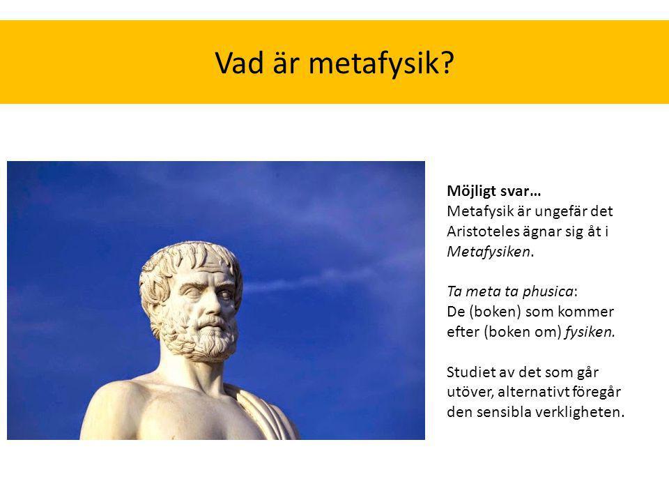 Vad är metafysik Möjligt svar…