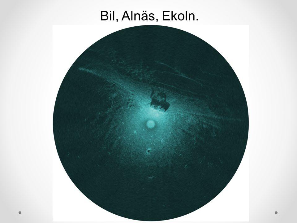Bil, Alnäs, Ekoln.