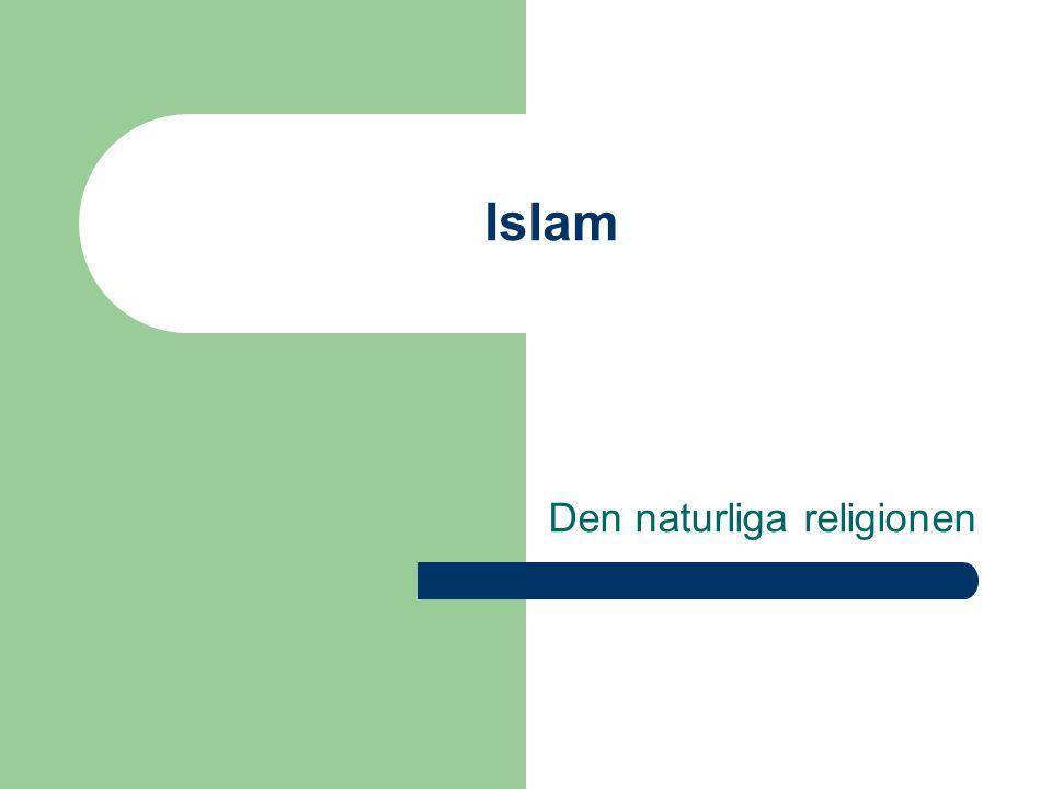 Den naturliga religionen