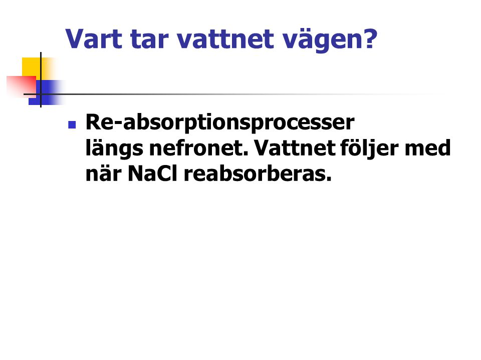 Vart tar vattnet vägen. Re-absorptionsprocesser längs nefronet.