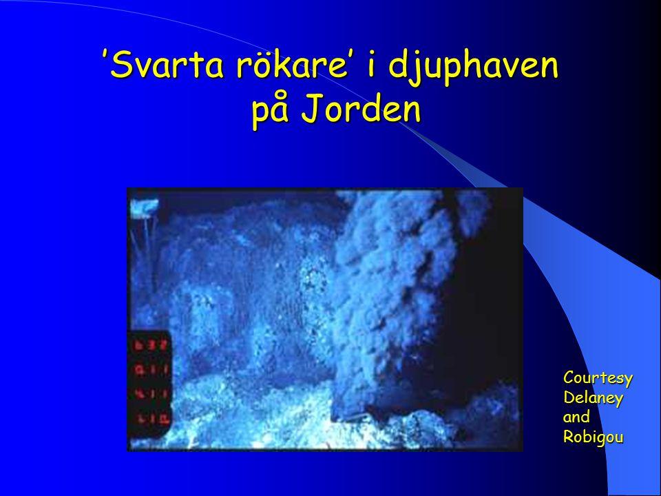 'Svarta rökare' i djuphaven på Jorden