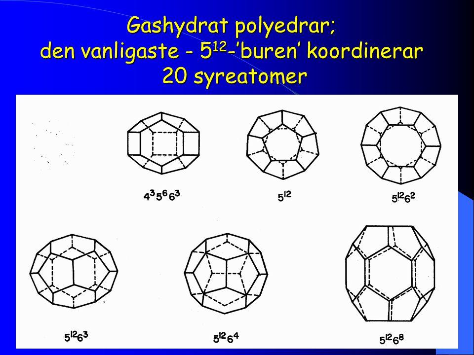 Gashydrat polyedrar; den vanligaste - 512-'buren' koordinerar 20 syreatomer