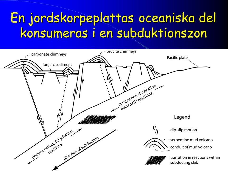 En jordskorpeplattas oceaniska del konsumeras i en subduktionszon