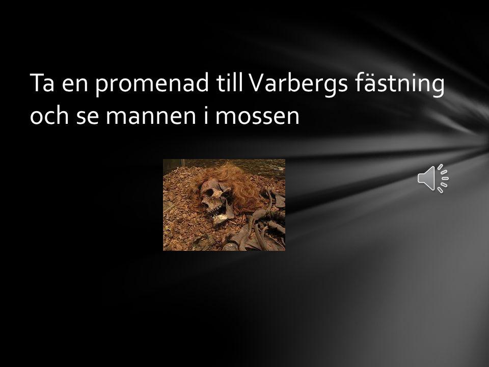 Ta en promenad till Varbergs fästning och se mannen i mossen