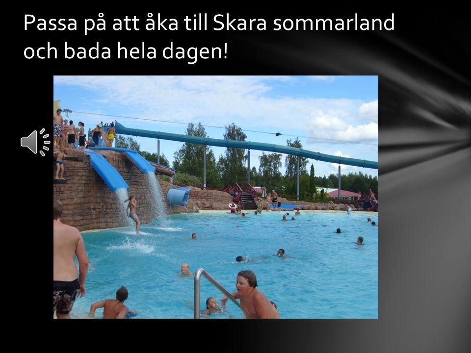 Passa på att åka till Skara sommarland och bada hela dagen!