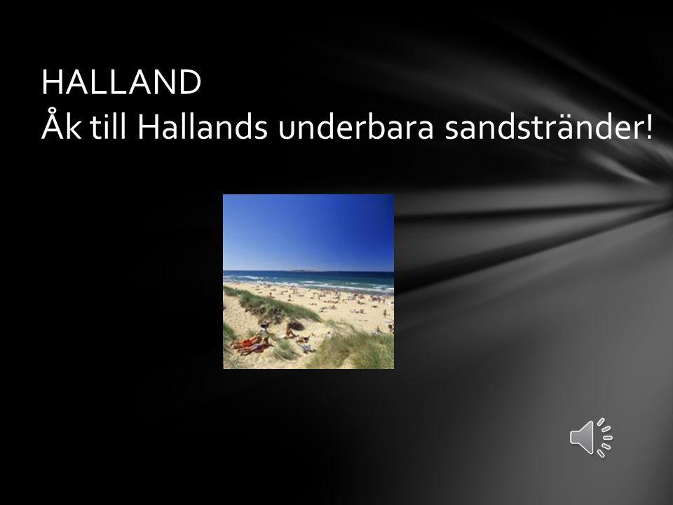 HALLAND Åk till Hallands underbara sandstränder!