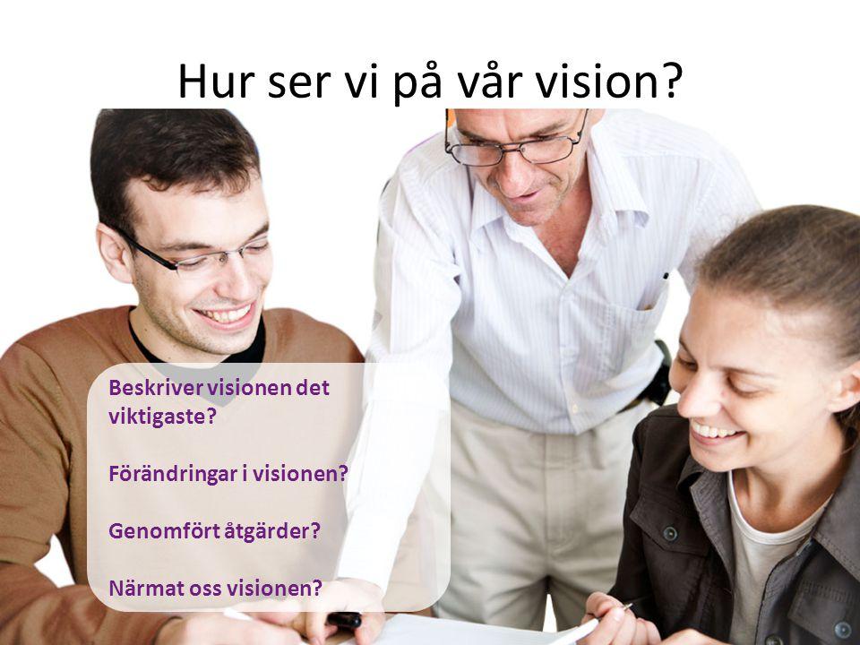 Hur ser vi på vår vision Beskriver visionen det viktigaste