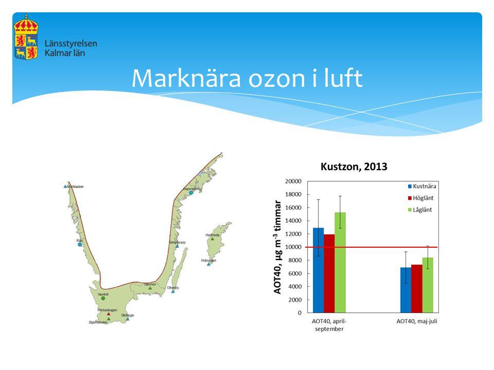 Marknära ozon i luft Hälsopåverkan