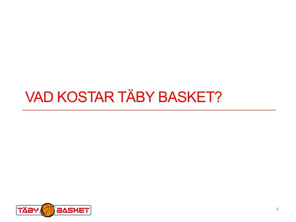 Vad kostar Täby basket Vad kostar det att driva runt verksamheten under ett år