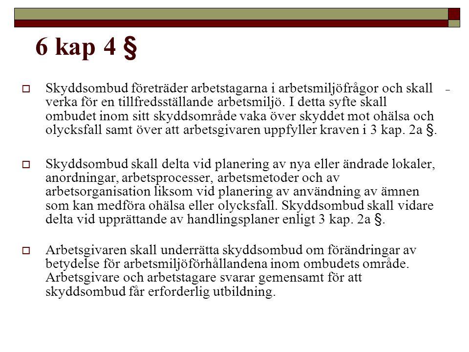 6 kap 4 §