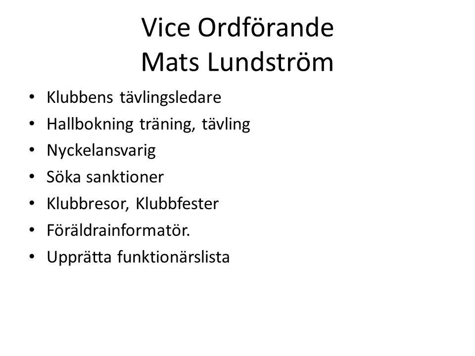 Vice Ordförande Mats Lundström