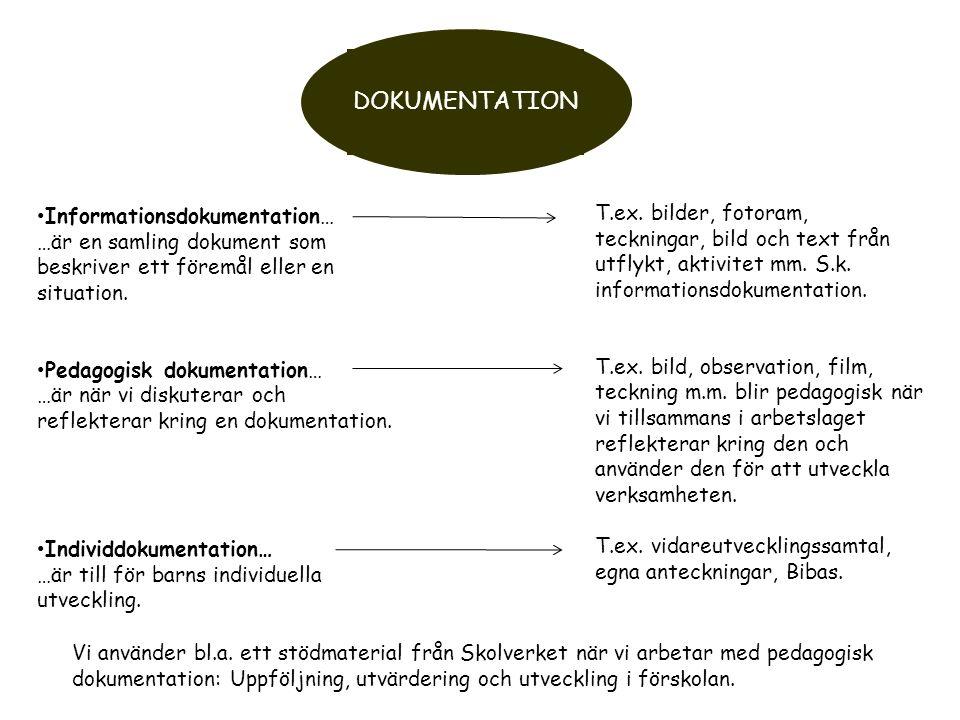 DOKUMENTATION Informationsdokumentation… …är en samling dokument som beskriver ett föremål eller en situation.