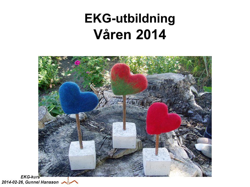 EKG-utbildning Våren 2014