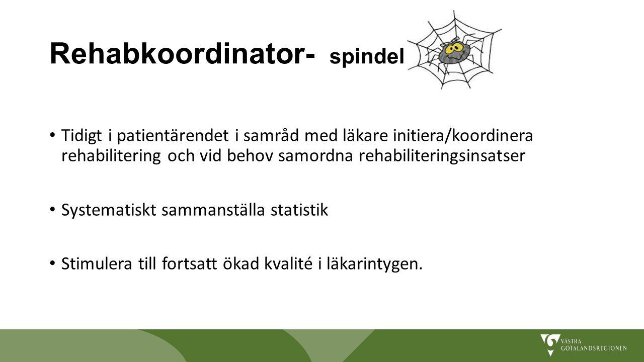 Rehabkoordinator- spindel i nätet