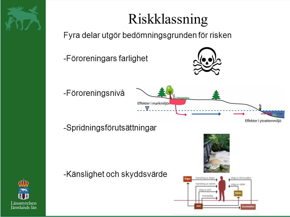 Riskklassning Fyra delar utgör bedömningsgrunden för risken