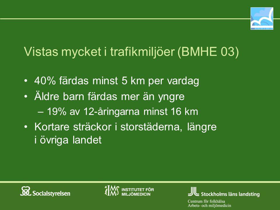 Vistas mycket i trafikmiljöer (BMHE 03)