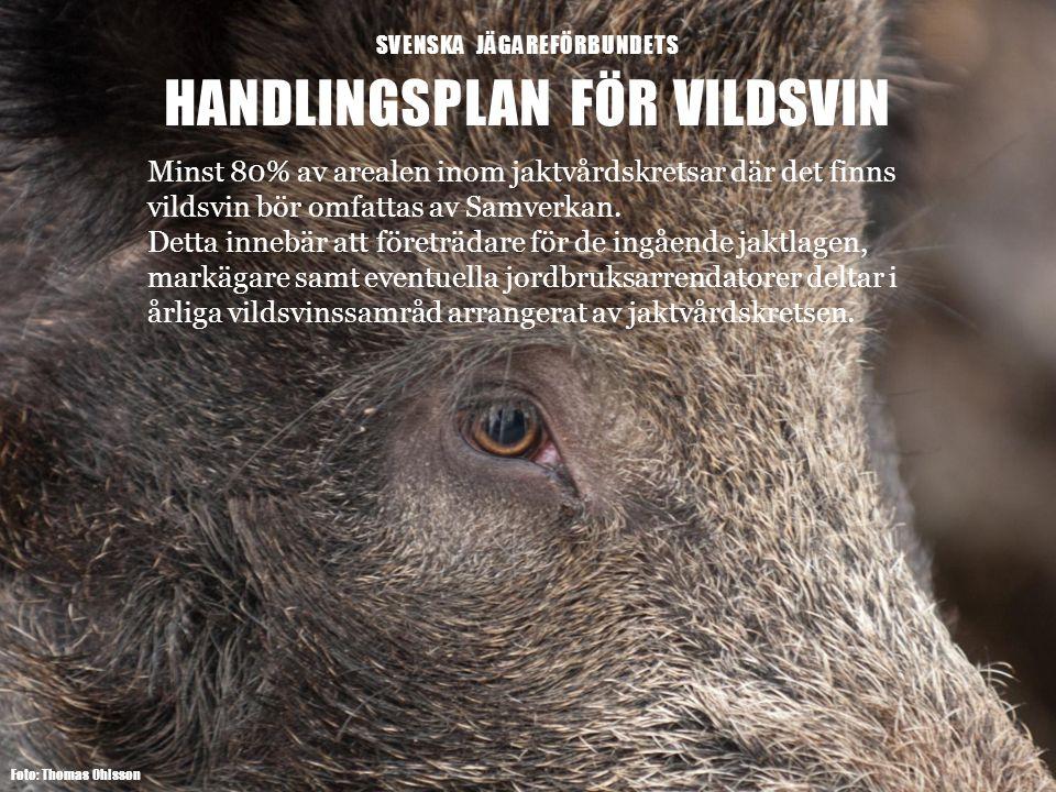 SVENSKA JÄGAREFÖRBUNDETS HANDLINGSPLAN FÖR VILDSVIN