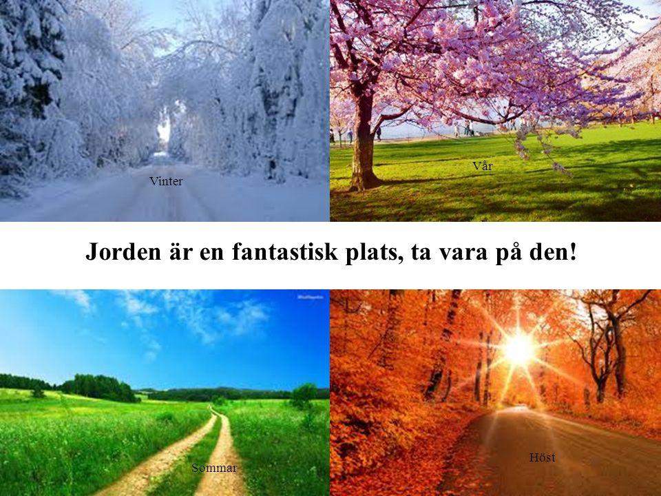Jorden är en fantastisk plats, ta vara på den!