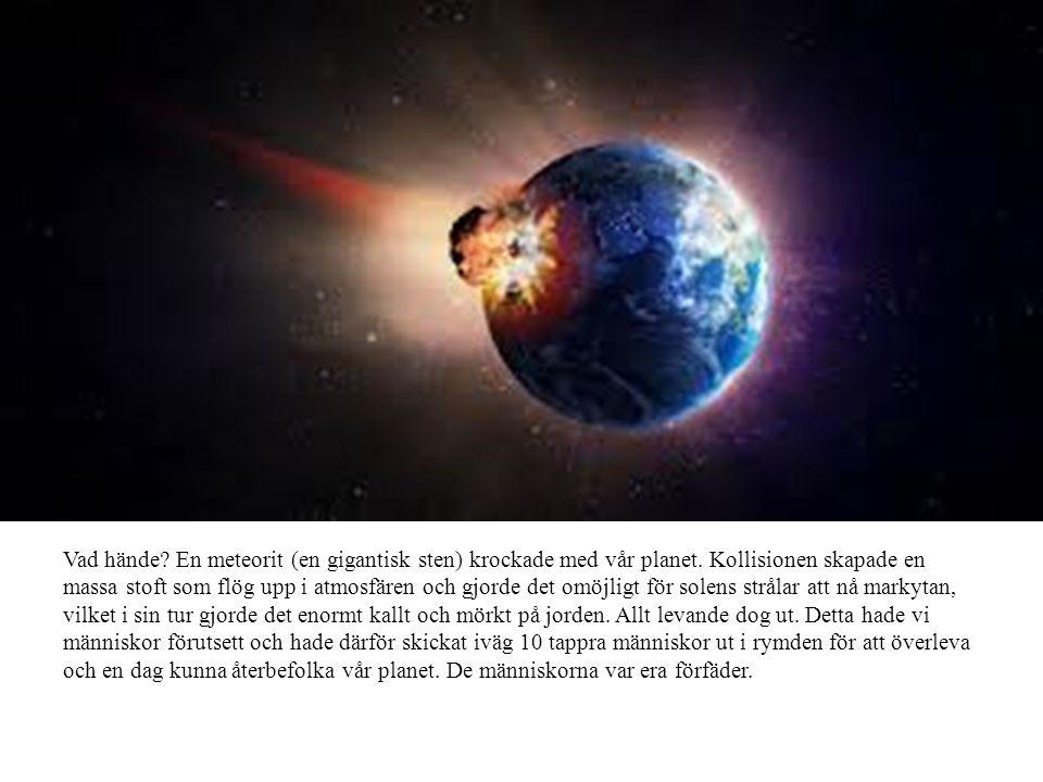 Vad hände. En meteorit (en gigantisk sten) krockade med vår planet