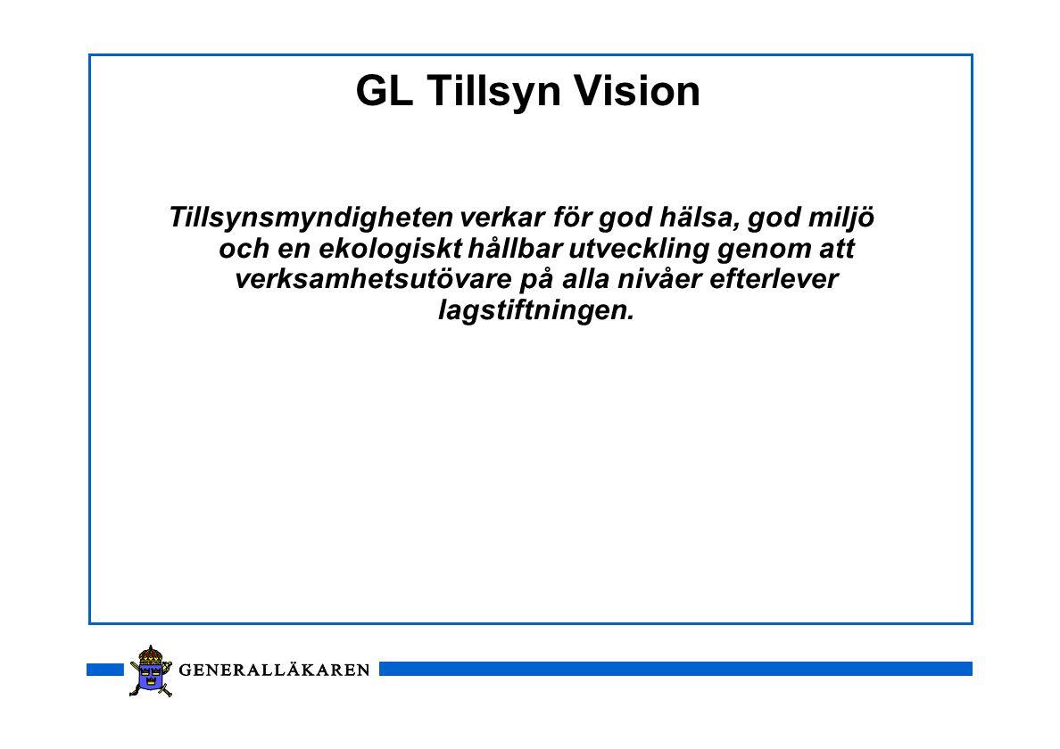 GL Tillsyn Vision