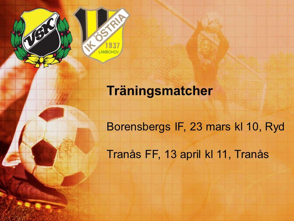 Träningsmatcher Borensbergs IF, 23 mars kl 10, Ryd
