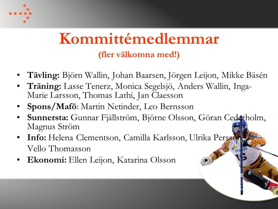 Kommittémedlemmar (fler välkomna med!)