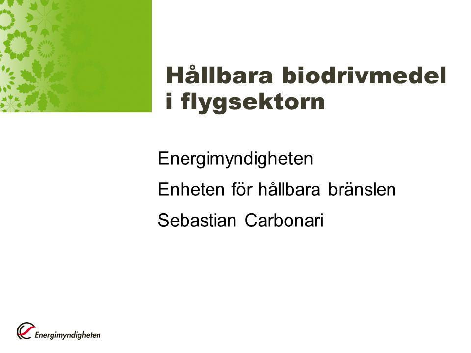 Hållbara biodrivmedel i flygsektorn
