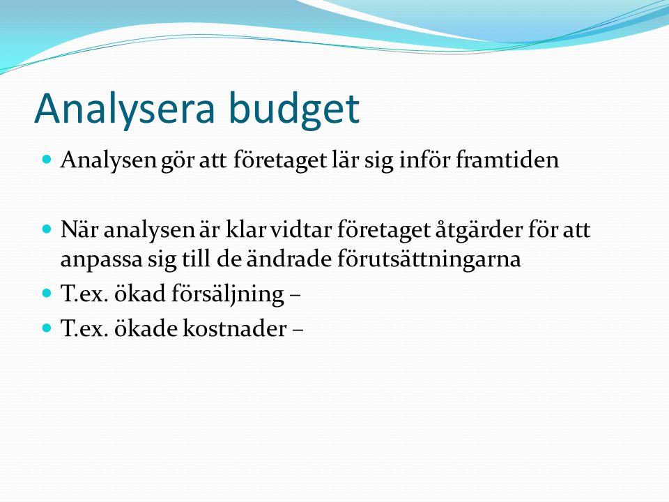 Analysera budget Analysen gör att företaget lär sig inför framtiden
