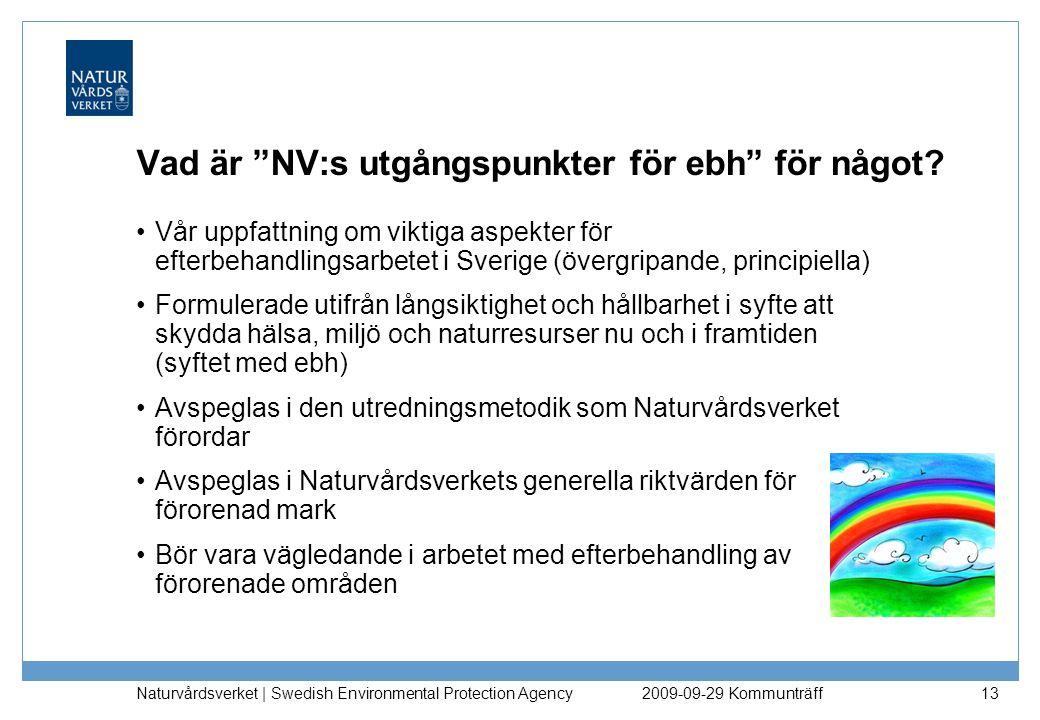 Vad är NV:s utgångspunkter för ebh för något