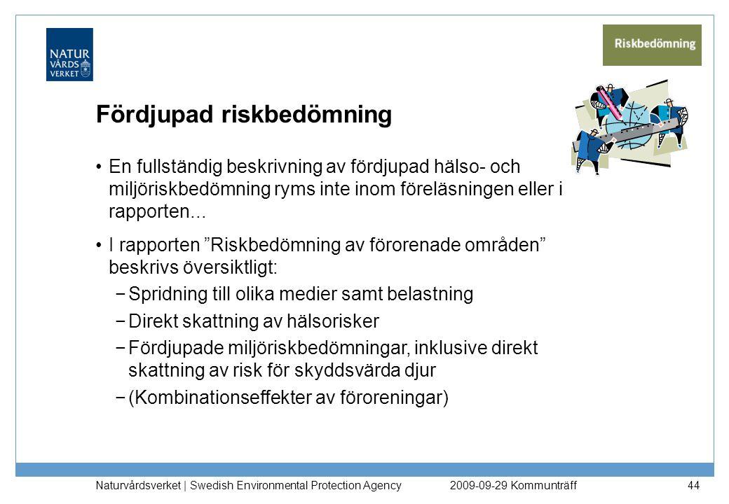 Fördjupad riskbedömning