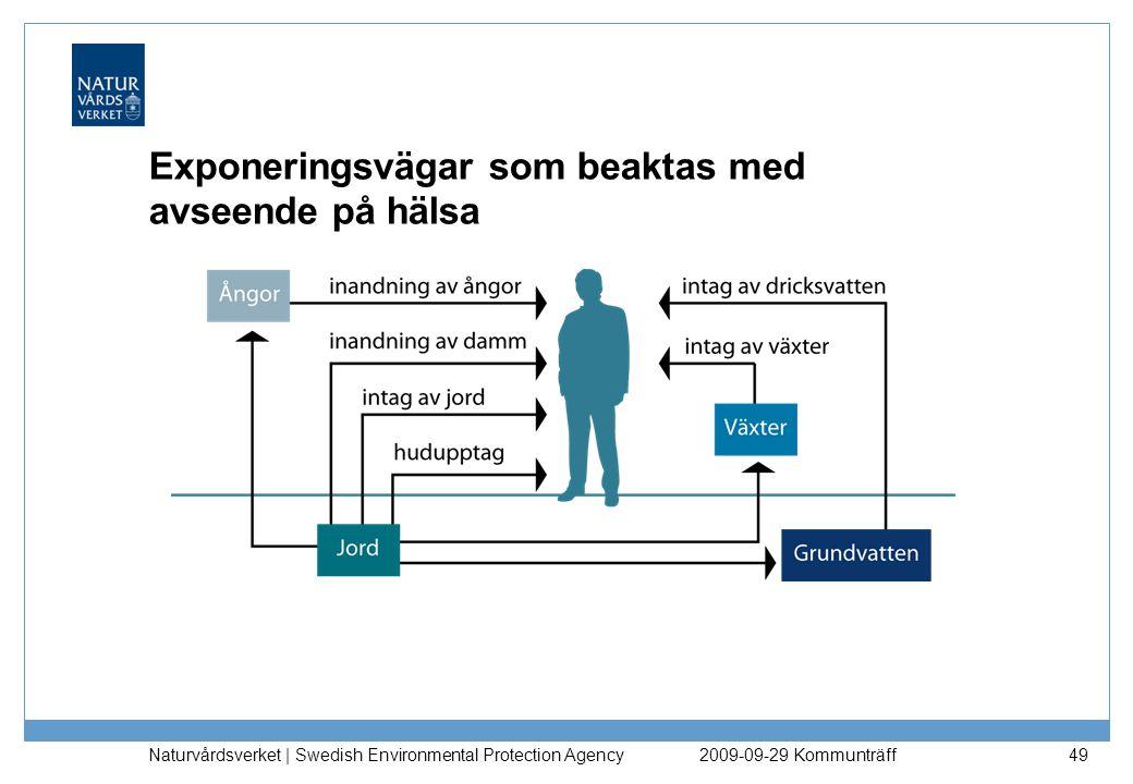 Exponeringsvägar som beaktas med avseende på hälsa