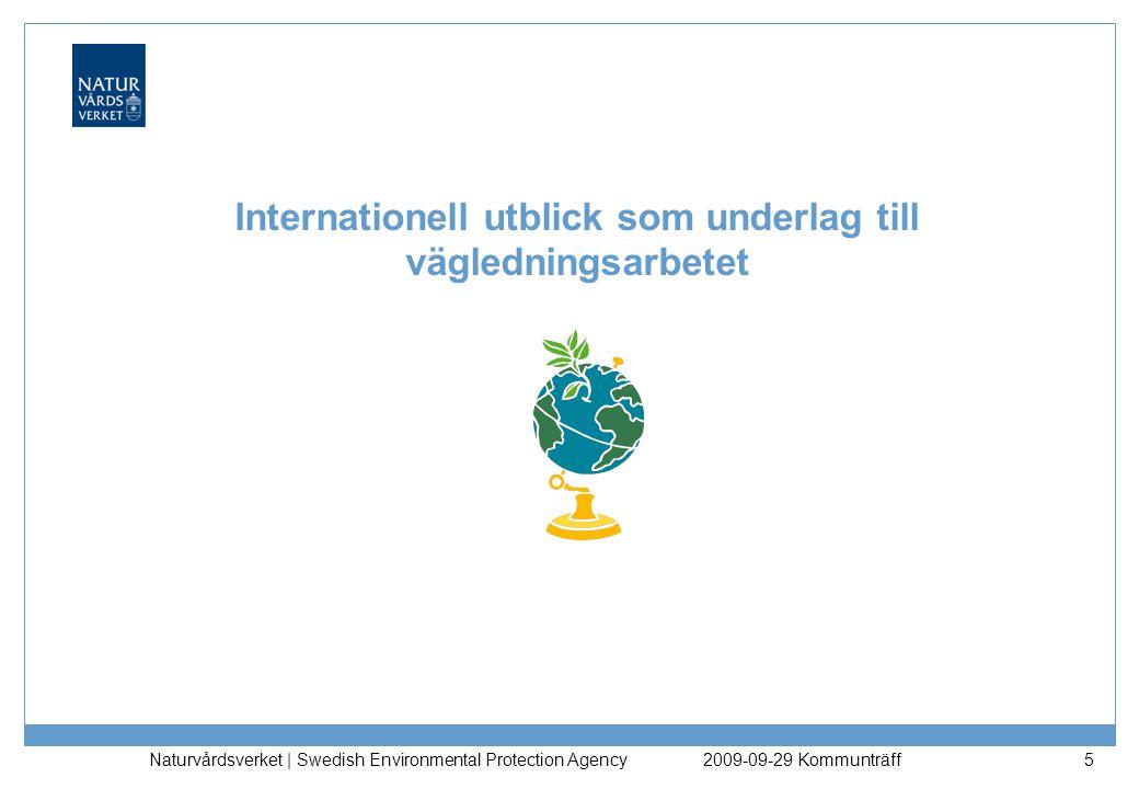 Internationell utblick som underlag till vägledningsarbetet