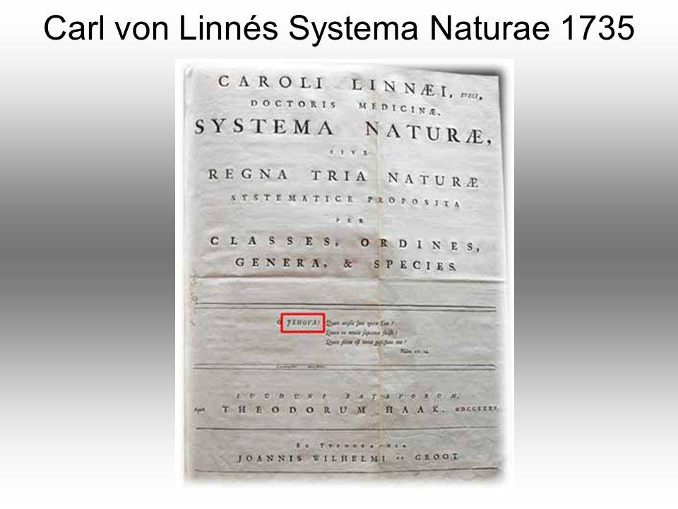 Carl von Linnés Systema Naturae 1735