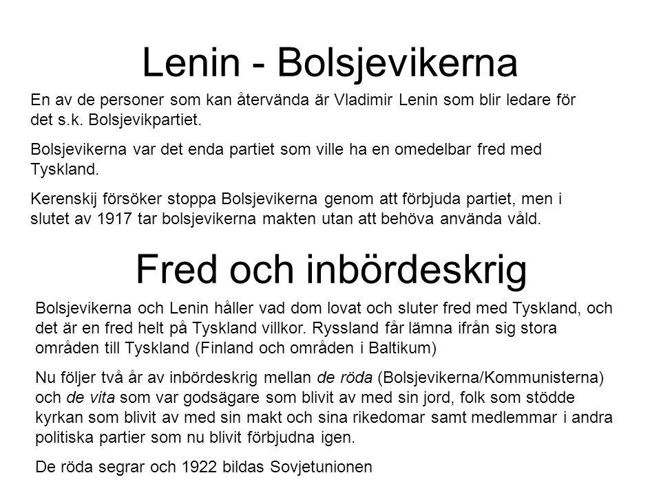Lenin - Bolsjevikerna Fred och inbördeskrig
