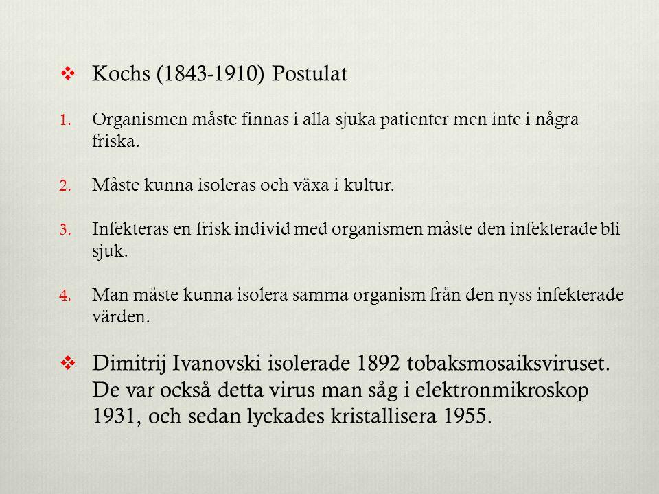 Kochs (1843-1910) Postulat Organismen måste finnas i alla sjuka patienter men inte i några friska.