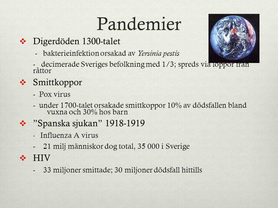Pandemier Digerdöden 1300-talet Smittkoppor Spanska sjukan 1918-1919