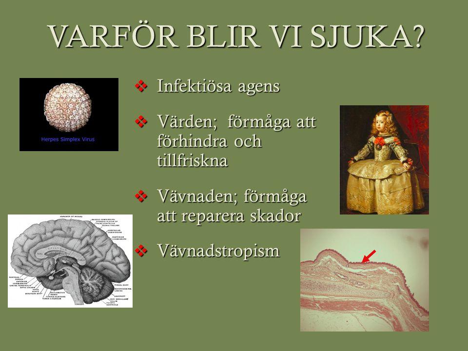 VARFÖR BLIR VI SJUKA Infektiösa agens