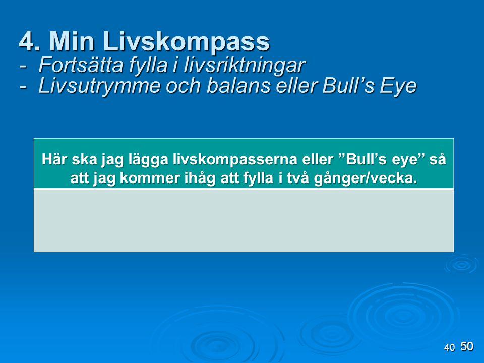 4. Min Livskompass - Fortsätta fylla i livsriktningar - Livsutrymme och balans eller Bull's Eye