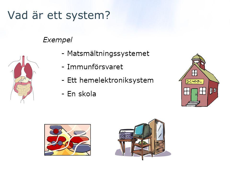 Vad är ett system Exempel - Matsmältningssystemet - Immunförsvaret