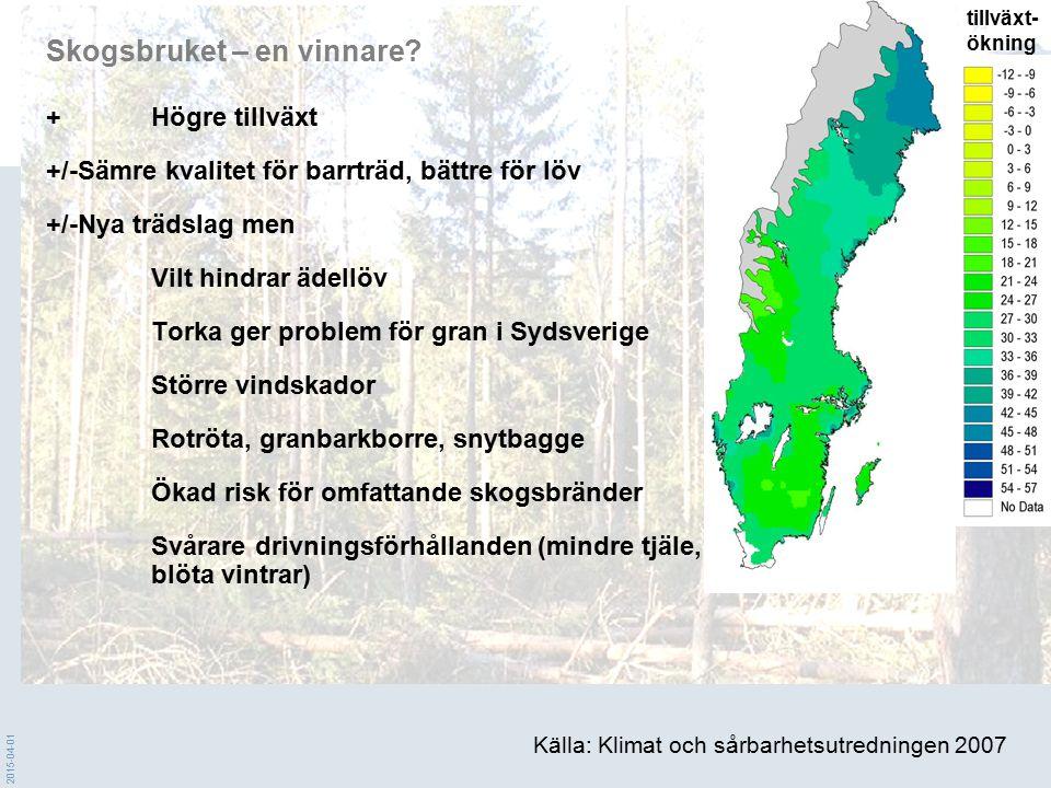 Skogsbruket – en vinnare