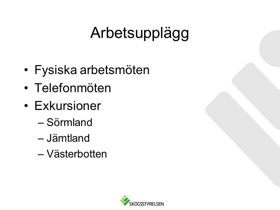 Arbetsupplägg Fysiska arbetsmöten Telefonmöten Exkursioner Sörmland