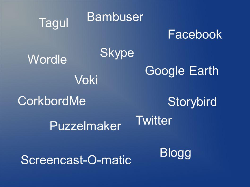 Tagul Bambuser. Facebook. Skype. Wordle. Google Earth. Voki. CorkbordMe. Storybird. Twitter.