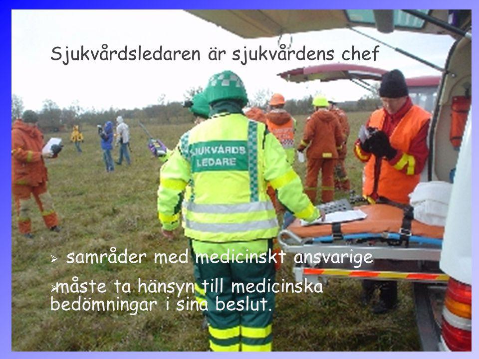 Sjukvårdsledaren är sjukvårdens chef