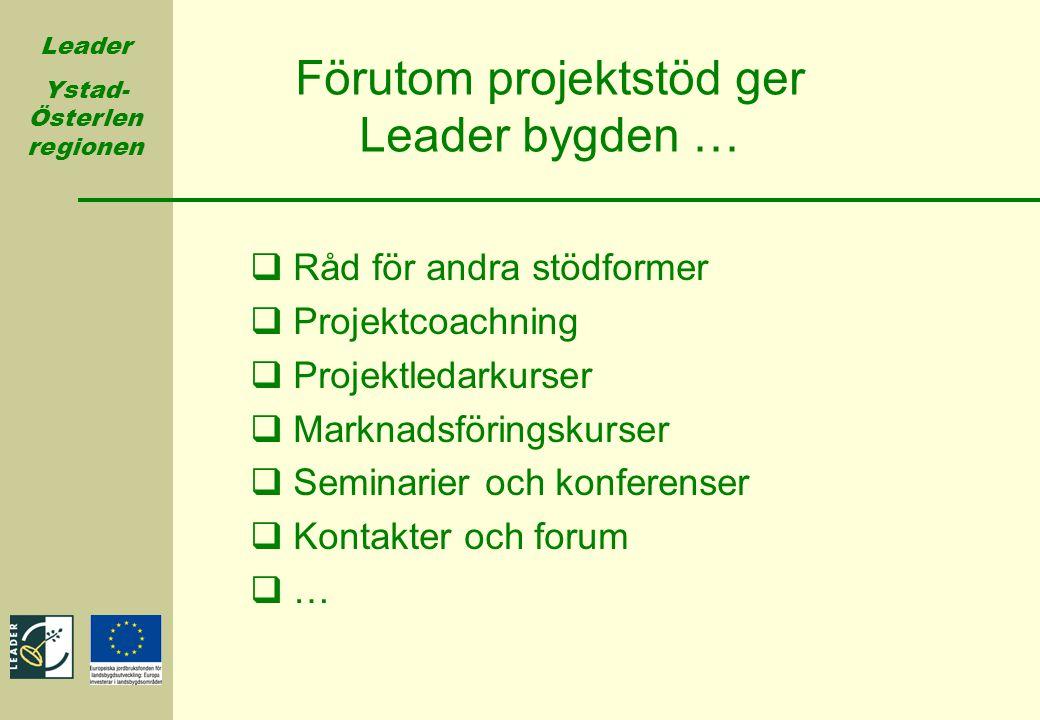 Förutom projektstöd ger Leader bygden …