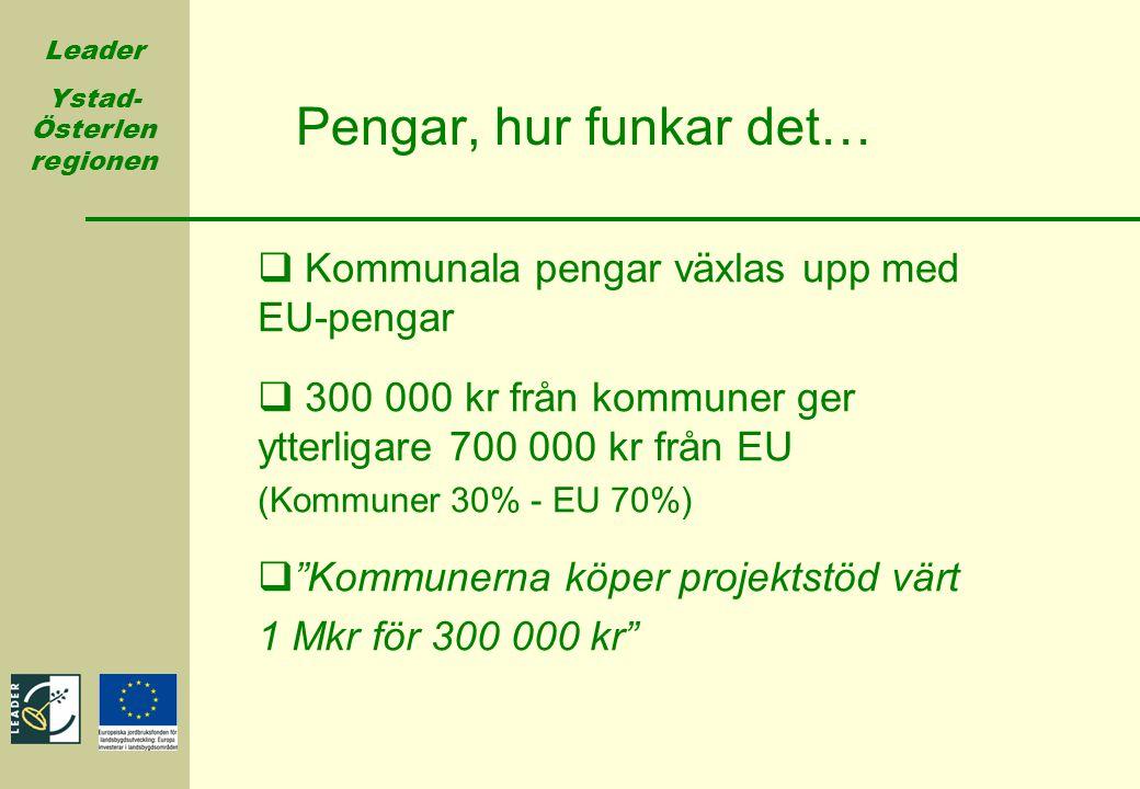 Pengar, hur funkar det… Kommunala pengar växlas upp med EU-pengar