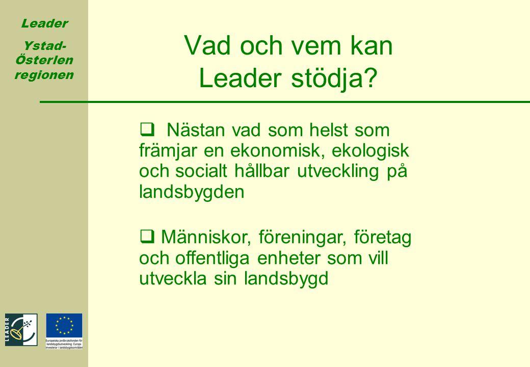 Vad och vem kan Leader stödja